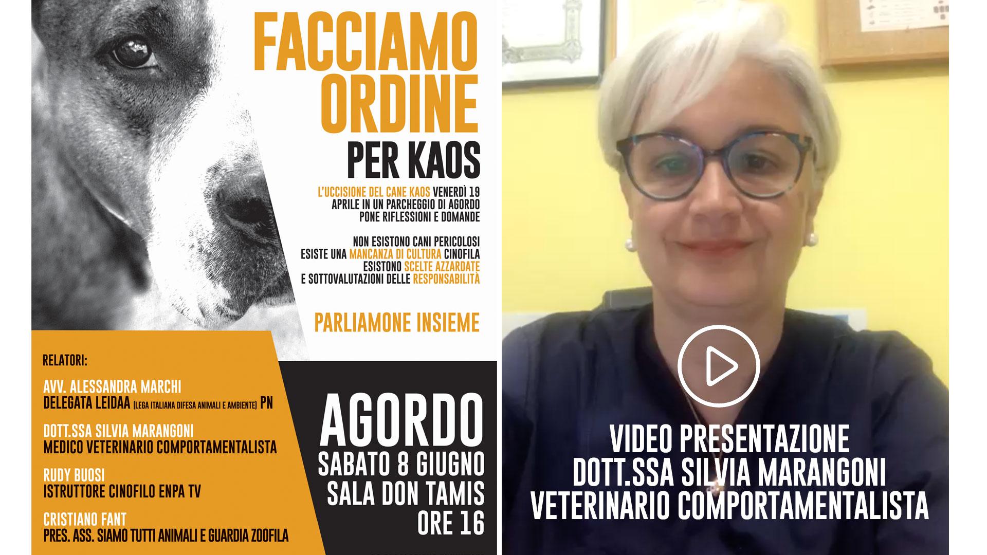 Domande Al Veterinario Cane razze canine pericolose o mal gestione umana? – video